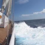 Kom dit weekend naar het Cruise & Zeil Event