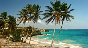 Cruise naar Barbados