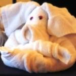 handdoekje